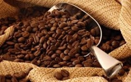 30% DECREASE IN VIETNAM COFFEE EXPORT AND PRODUCTION