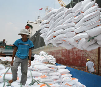 Rice producers urged to go slow on exports