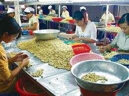 Price of agricultural products fell sharply due to tough competition