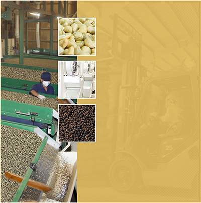 Agricultural products processing